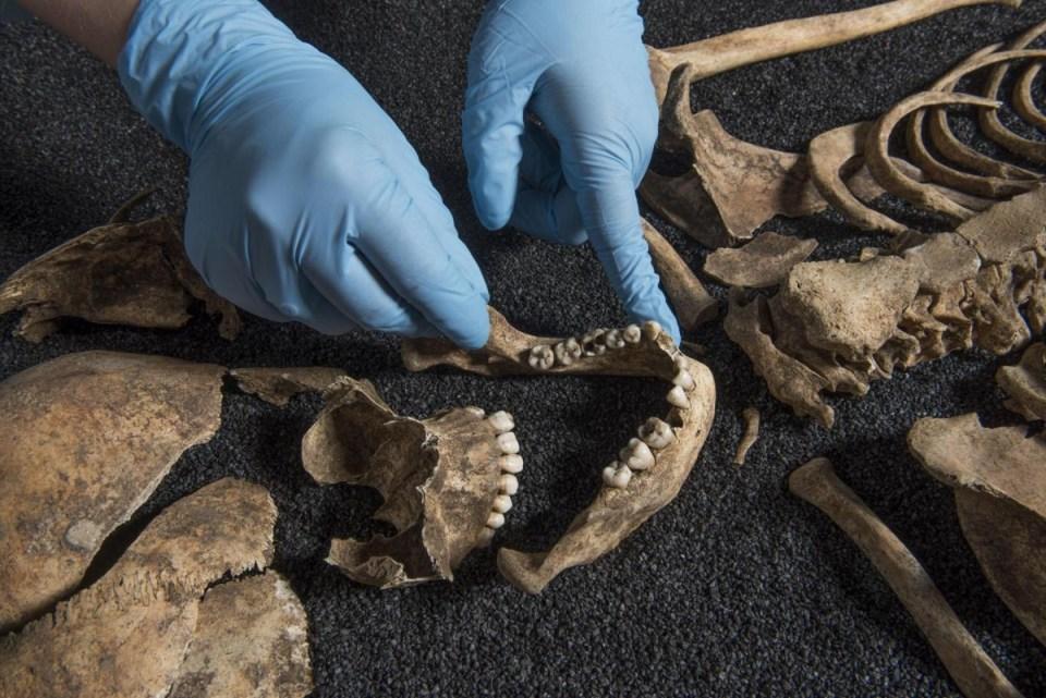skeleton-roman-museum-london-1200x801