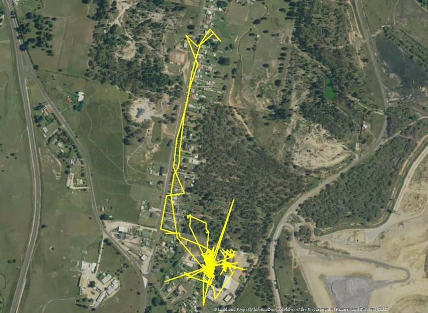 gps-tracker-cat-movement-map-lithgow-central-tablelands-local-land-services-2