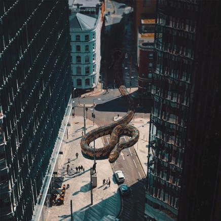 giant-animals-mani-photography-1