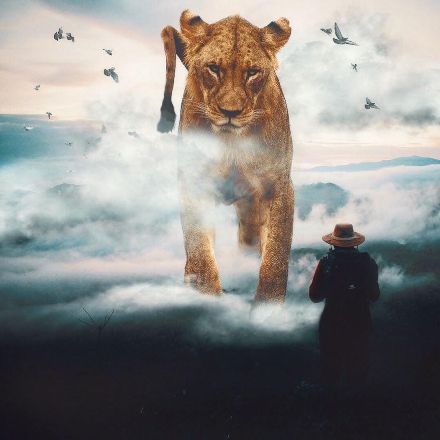 giant-animals-mani-photography-12
