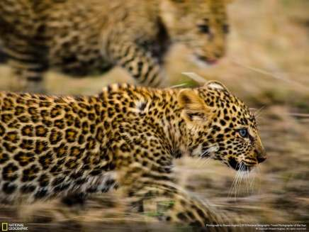 national-geographic-travel-photography-21