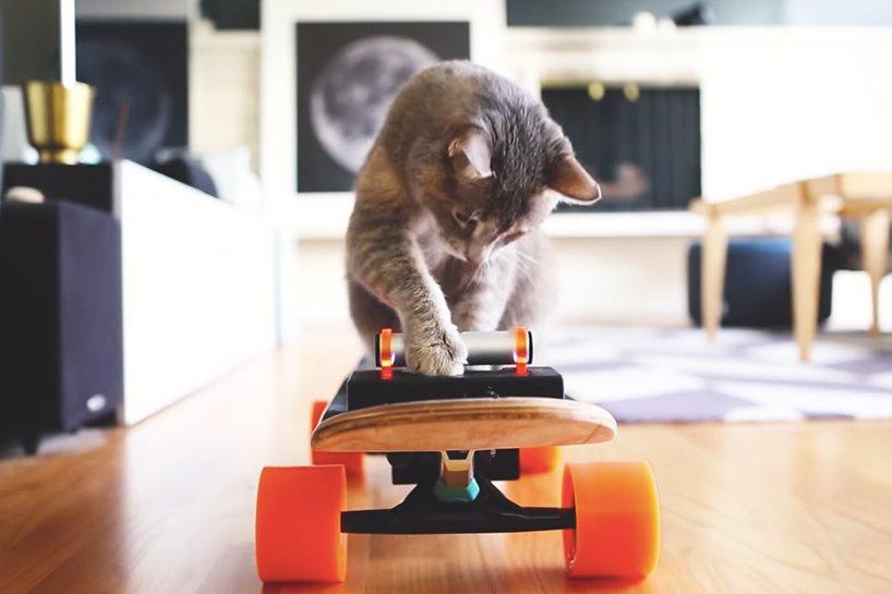 electric-skateboard-cat-designboom-03