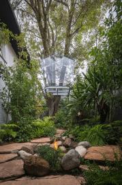gerardo-broissin-glass-treehouse-mexico-city-designboom-02