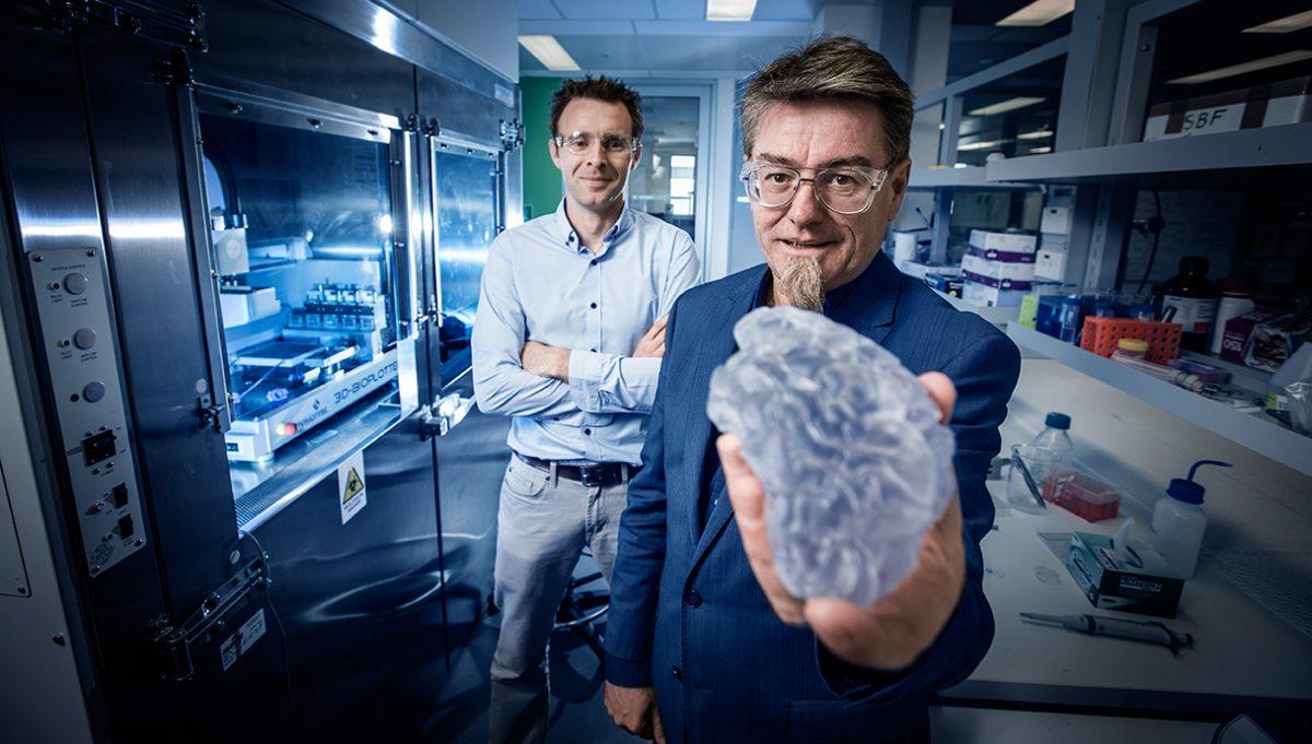 Kök hücreden 3D yazıcıyla kulak basmak mümkün