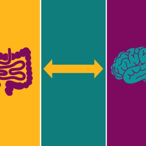 gut-brain-axis-anxiety-depression-fatigue