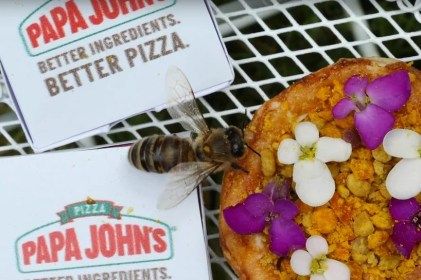 papa-john-mini-pizza-bees-designboom-03