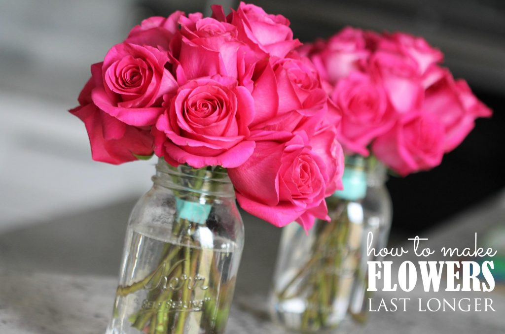 how-to-make-your-fresh-flowers-last-longer
