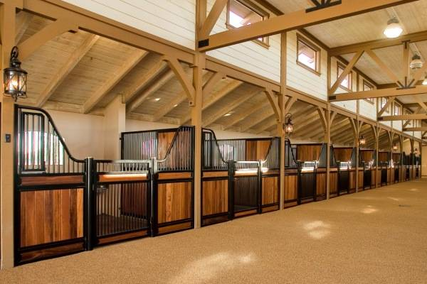 horse barn and stable