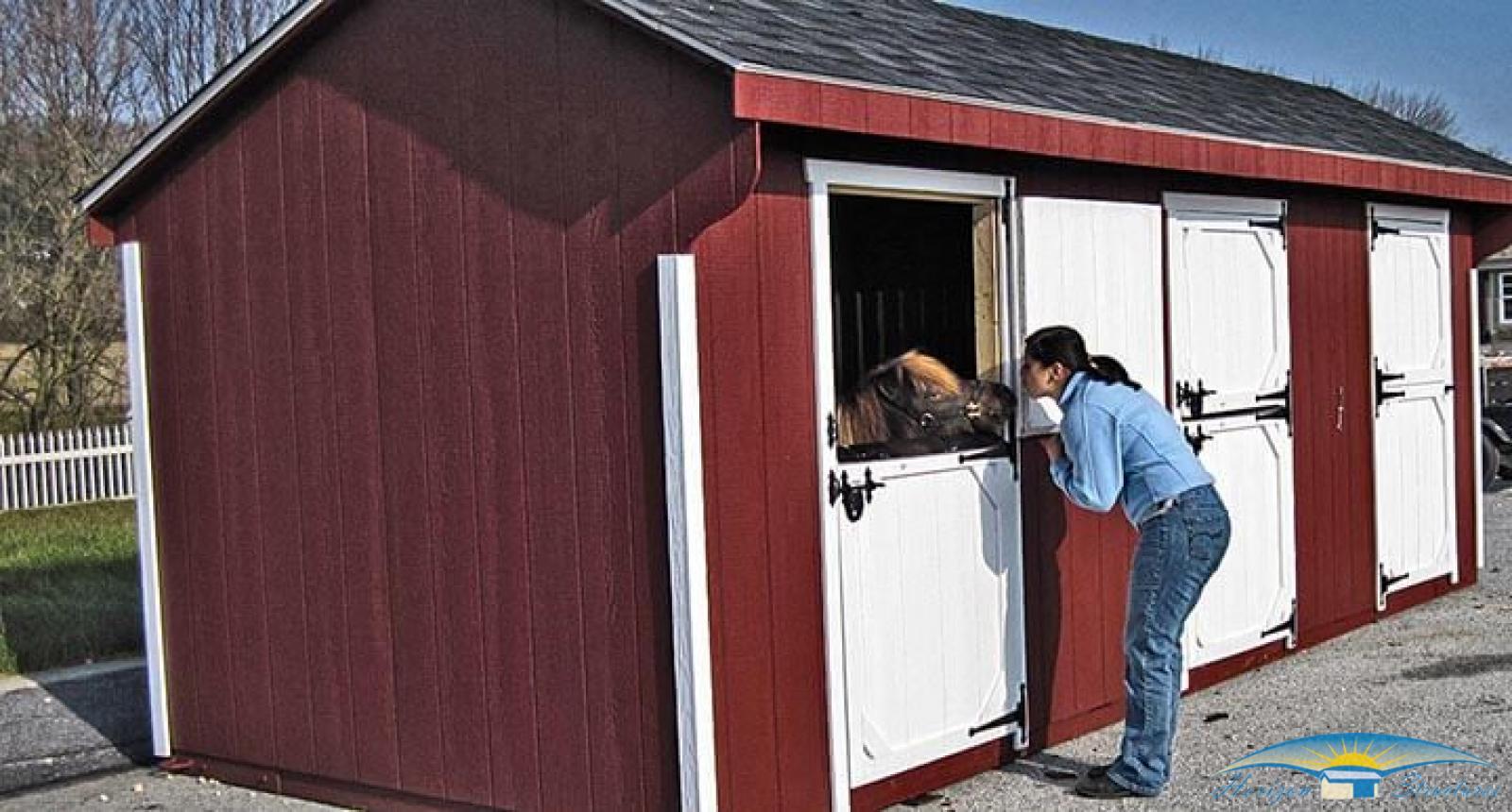 mini horse barns