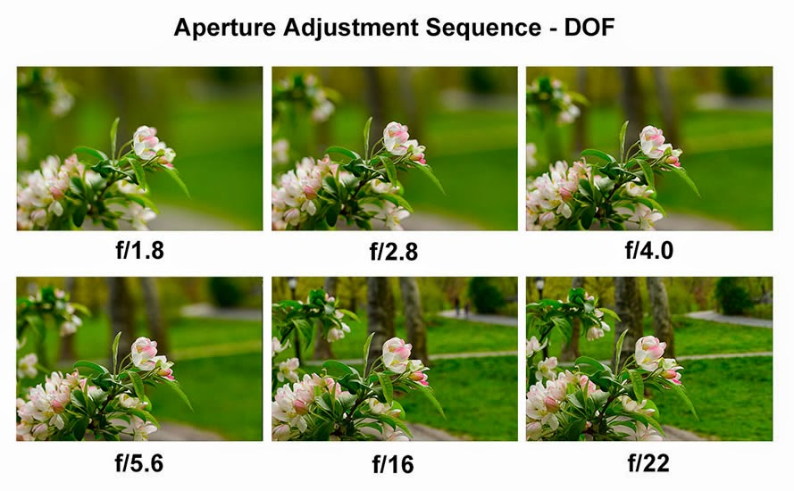 Aperture size to focus background