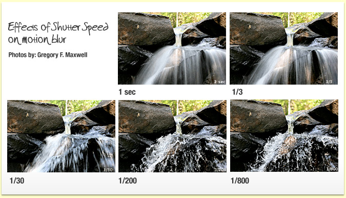 shutter speed photo examples for moving objects