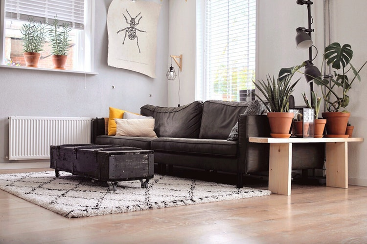 Sofa placement tips