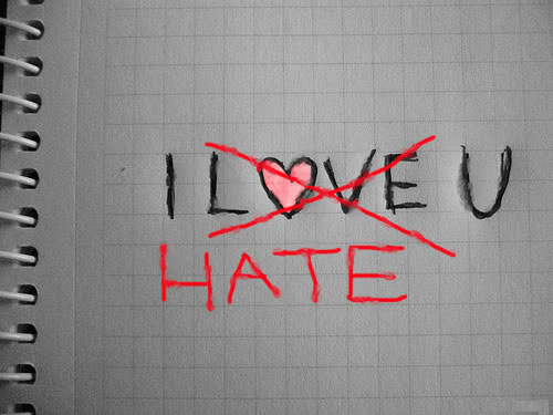 Big Data : why you'll love to hate it