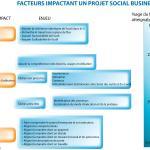 Qu'est ce qui impacte la réussite de votre projet social business (et qui en est responsable) ?