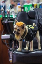 Kona of South Side Barber Shop (Photo by Aaron Warnick)