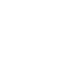 DTL_logo_wit