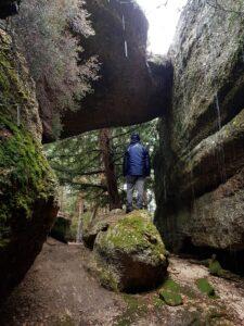 La Cueva del Tejo
