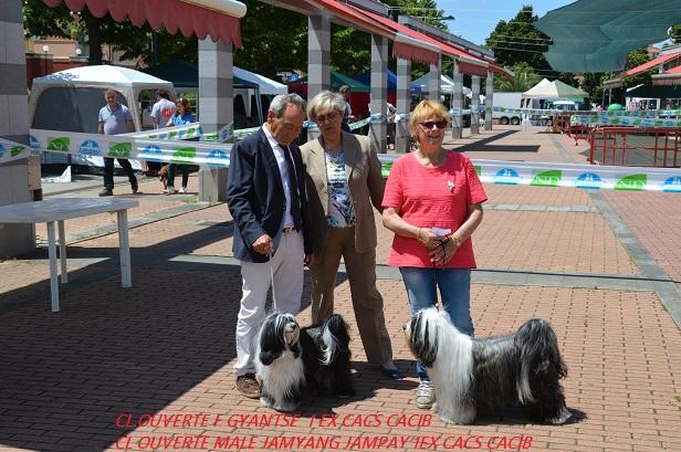 Exposition de Rapallo Italie le 18 juin 2016, juge Mme MARCHESE MARIA LUISA