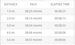 5 mile tempo