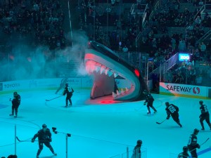 Let's Go Sharks