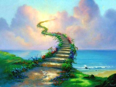 cennet hayatı hakkında bilgi