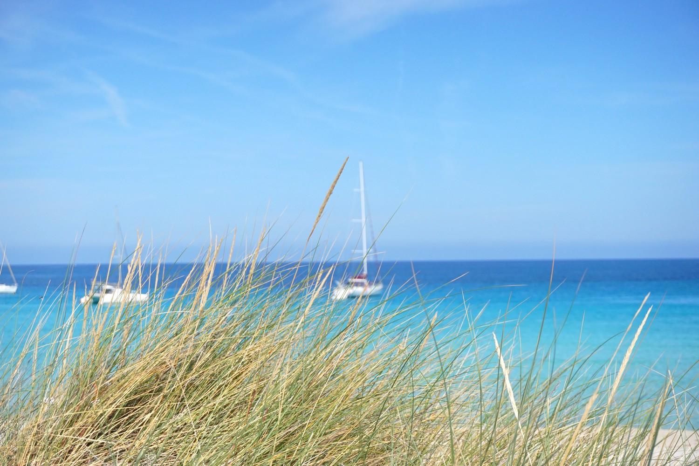 plage de saleccia saint florent nebbio blog corse voyage road trip