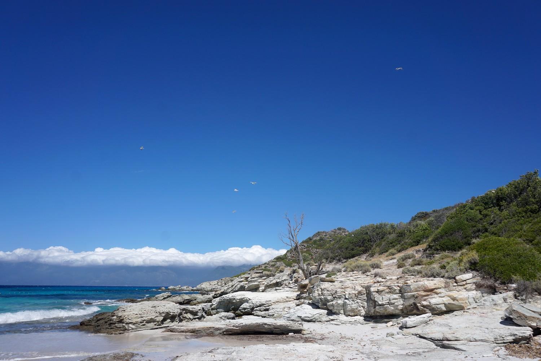 plage du lotu corse corsica blog voyage road trip 02