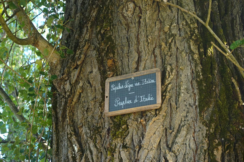chateau-dagassac-route-des-vins-bordeaux-gironde-blog-aquitaine-voyage-tourisme-bonnes-adresse-16