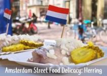 Amsterdam Herring street food
