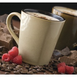 Sugar Free Chocolate Raspberry Cappuccino Mix