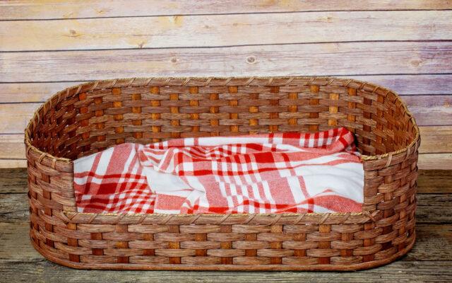 Large Dog Bed Basket Brown