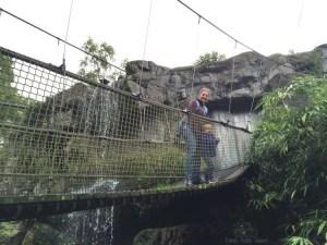 Rope Bride Rotterdam Zoo