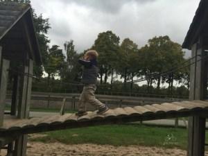 Breda Playground with Goats