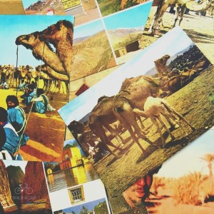 Morocco Postcards