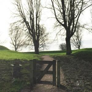 Through the Gate at Slot Loevestein