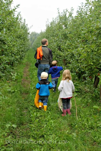 apple-picking-netherlands-2016