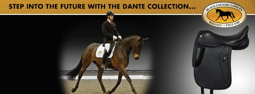 Black Country Dante range performance banner