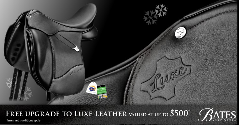 Bates Saddles 2018 Luxe Leather Upgrade