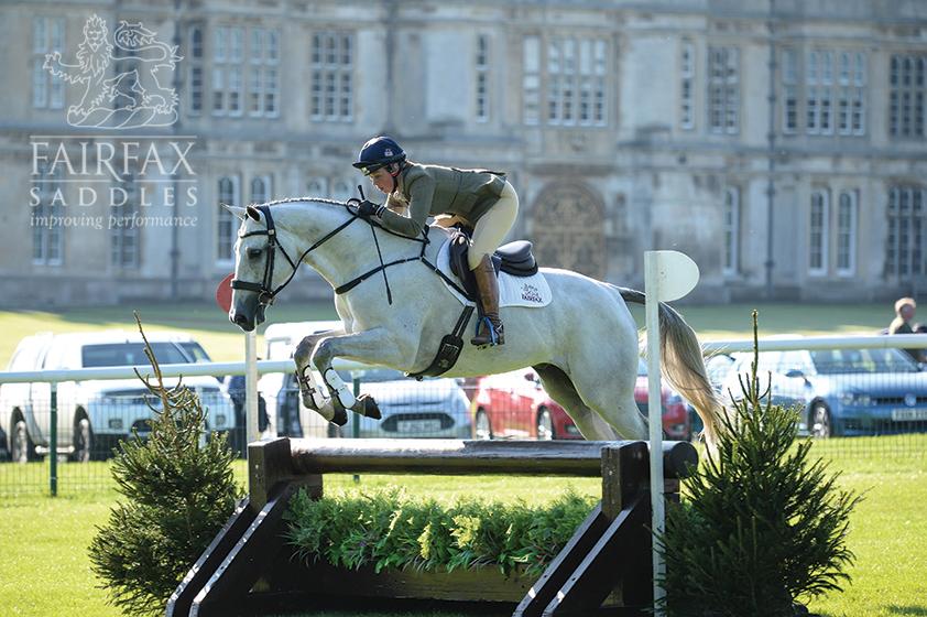 Fairfax Saddles Eventing gray horse