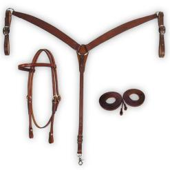 Fabtron Combo breast collar, headstall, and reins in chestnut bridle leather