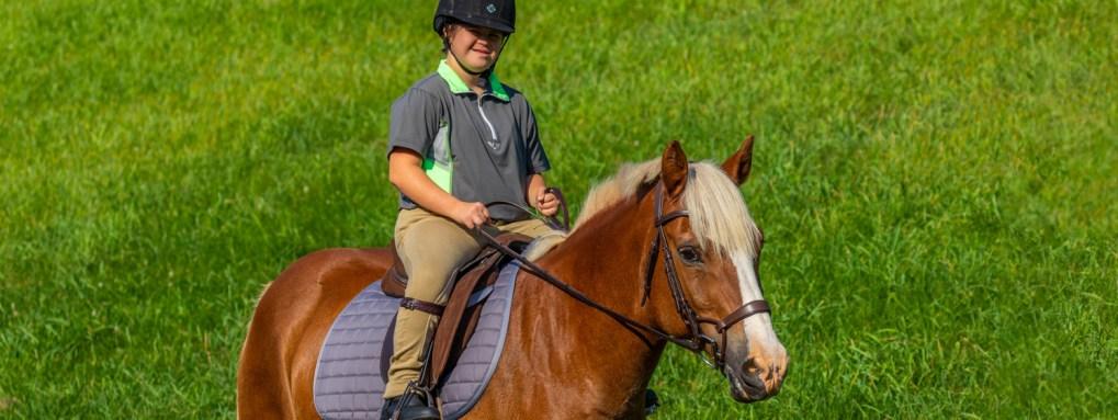 Thorowgood AP saddle with Halflinger pony and rider