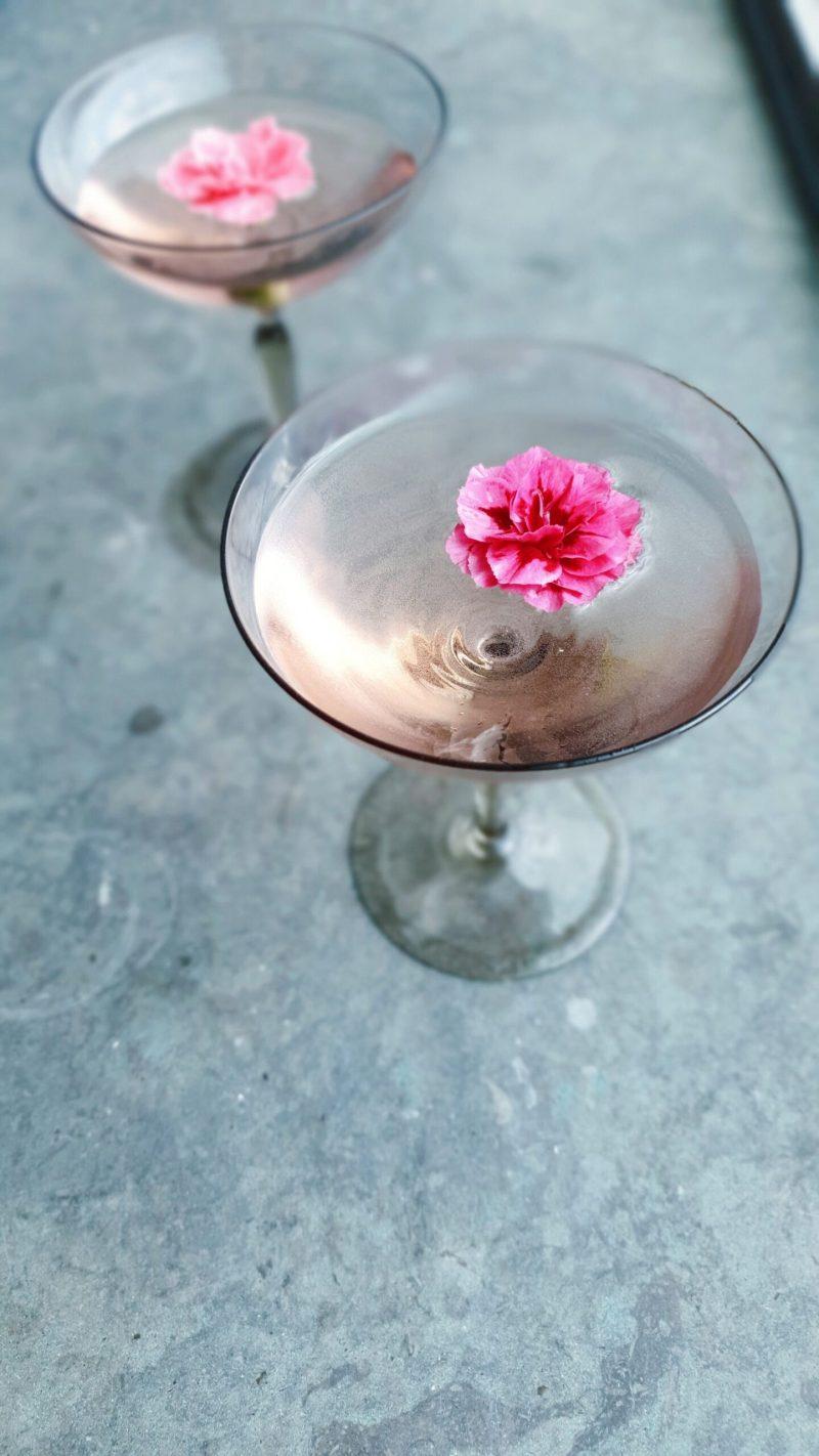 starlino dutch gin cocktail recipe martini