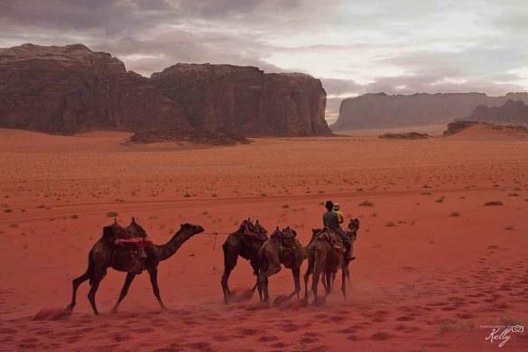 de mooiste woestijnen