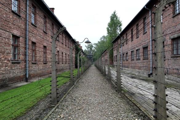 Auschwitz en Birkenau bezoeken