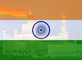 Grootste domoren ter wereld wonen in India