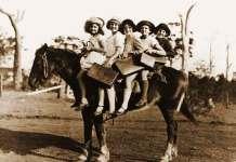 Wil je superslimme kinderen? Laat ze paardrijden!