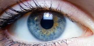 Voedingsmiddelen die goed zijn voor je ogen