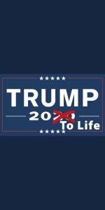 Donald Trump - Gevangenisstraf