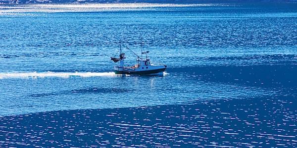 vissersboot overbevissing
