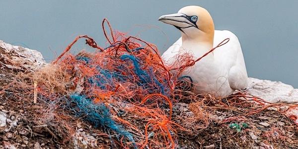 plastic afval pollution